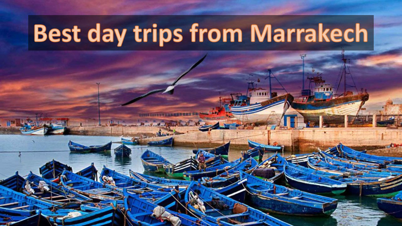 Best day trips from Marrakech